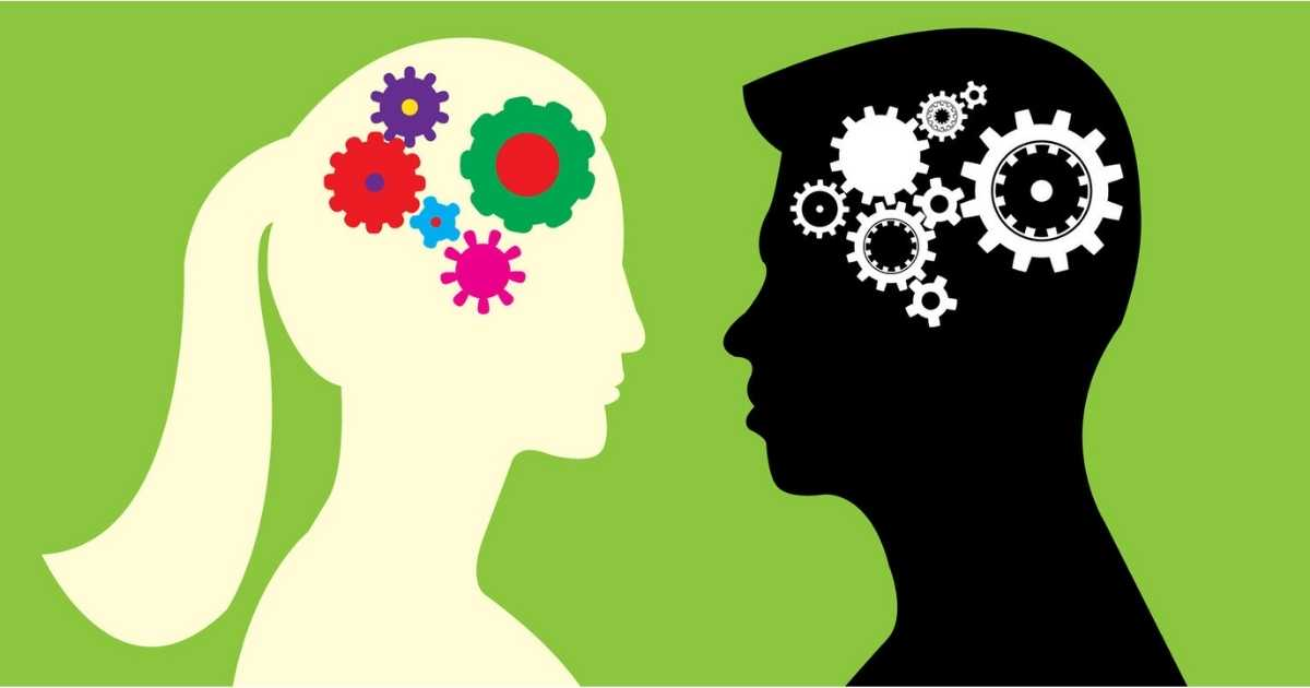Differences between men and women's brains