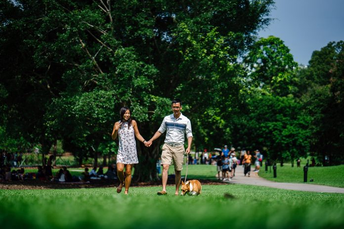 Researchers map how city people get health boost from nature